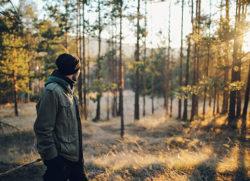 Assurance forêt privée